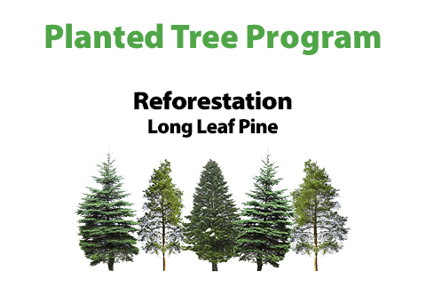 """Planted Tree Program"" ""Reforestation, Long Leaf Pine"" Image of trees."